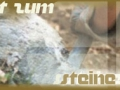 steinekloppen-jpg_backup